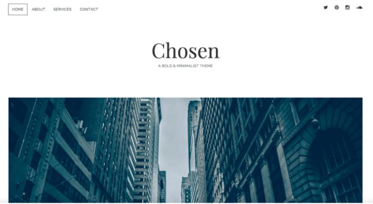 Chosen WordPress Theme Preview