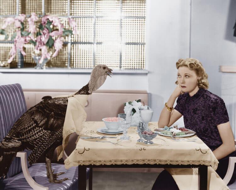 bird dinner table unique idea
