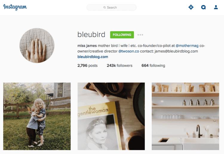 bleubird instagram