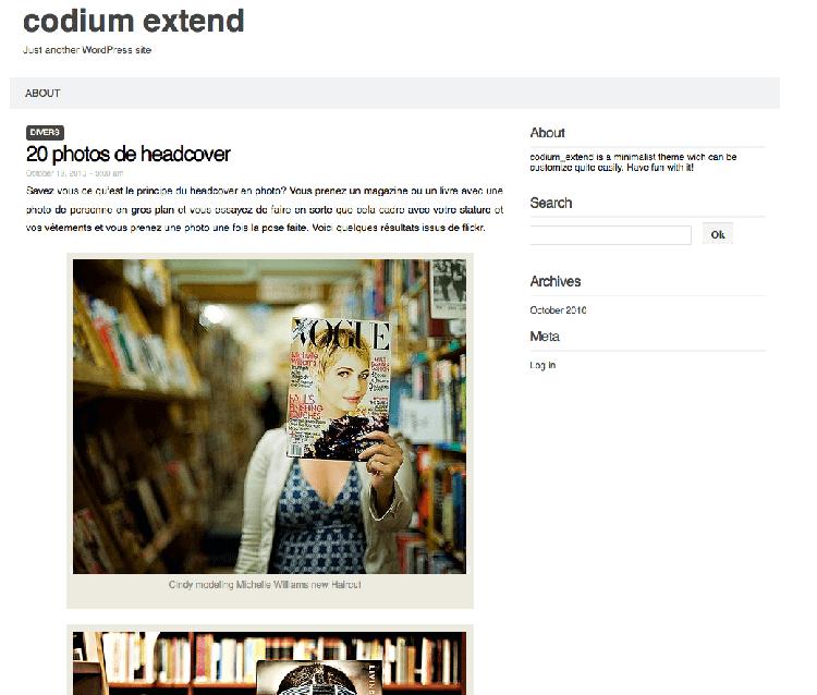 codium extend responsive theme