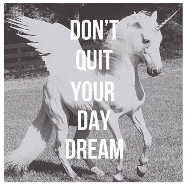 dont quit day dream