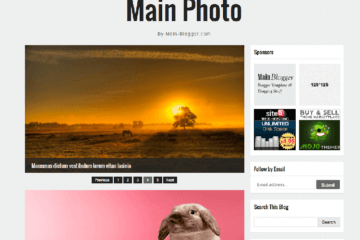 main photo responsive theme