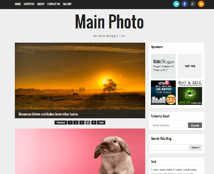 main photo responsive theme