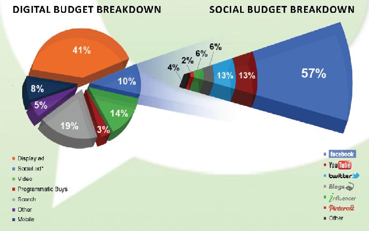 social budget breakdown