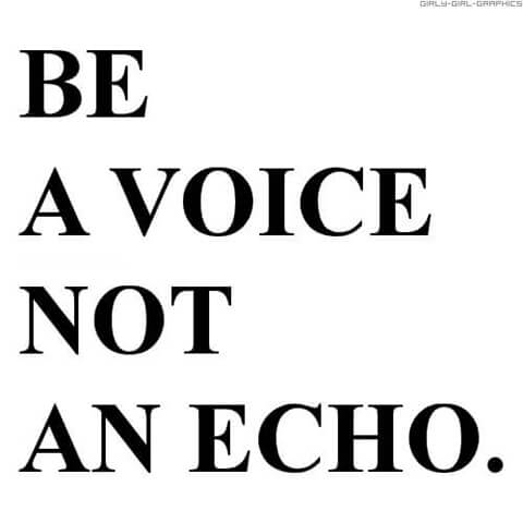 voice not echo